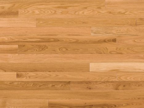 Plans to Follow For Growing Better Floor With Specialized Facilitate